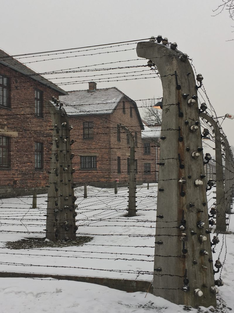 Barbed wire fencing and barracks at Auschwitz concentration camp