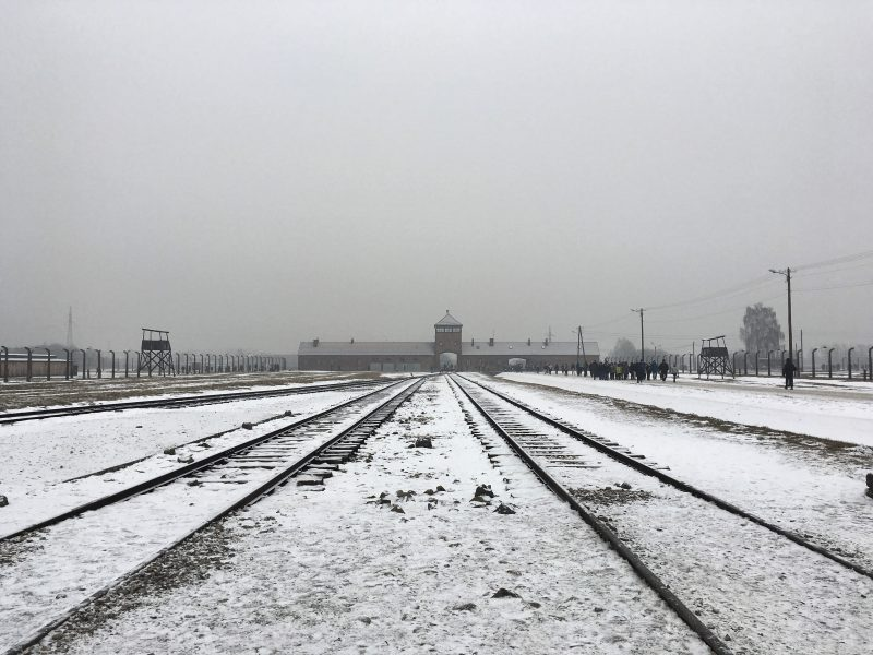 Train track leading into Auschwitz II Birkenau