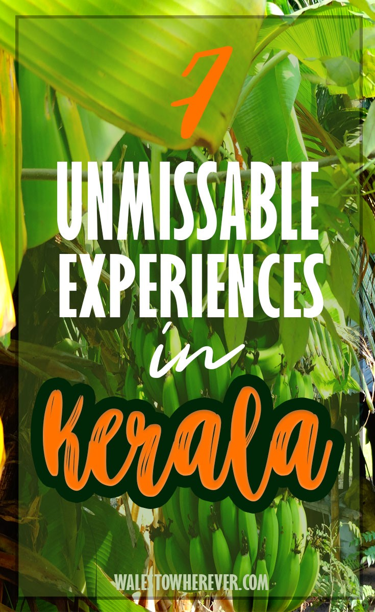 One of the most visited states in India, check out these 7 experiences you really can't miss in God's Own Country! #India #Kerala #Alleppey #IncredibleIndia #KeralaTravelGuide
