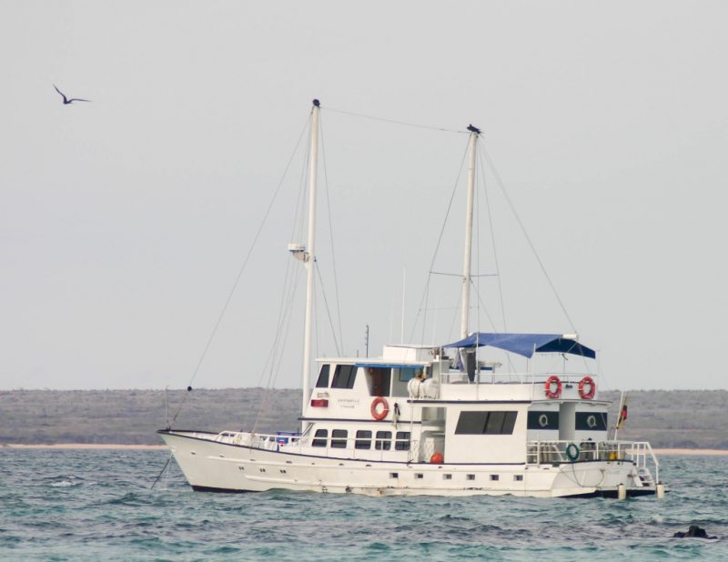 A sight-seeing boat exploring the waters of the Galapagos Islands