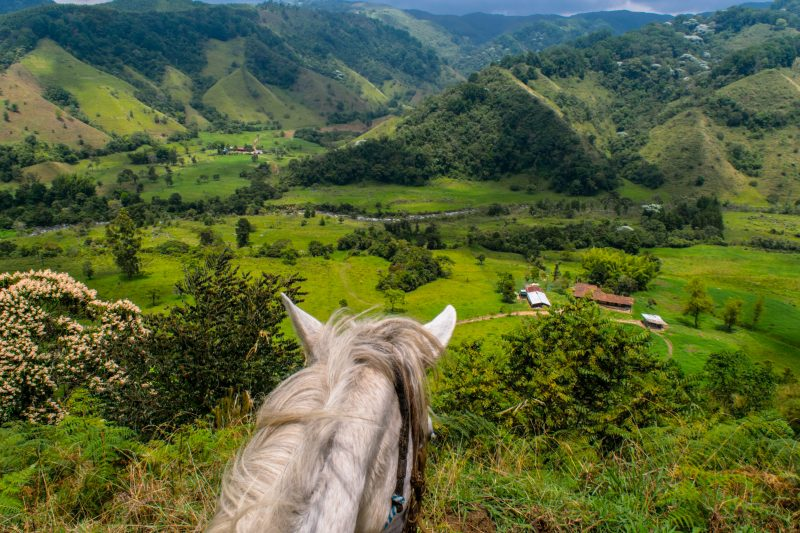 The view of the Salento Valley from the back of a horse in Colombia