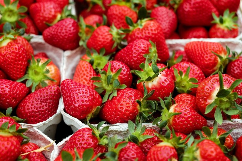 Punnets of fresh strawberries