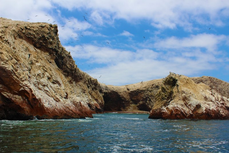 The stunning Islas Ballestas near Paracas is a must-see stop during your two weeks in Peru